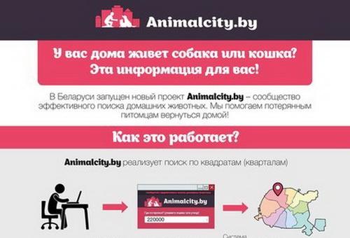 animalcity_0